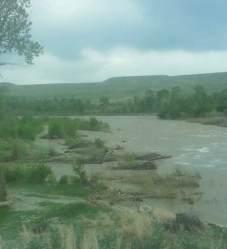 Minor flooding along the Wind River near Diversion Dam taken in May. Photo by Dionne Tidzump.