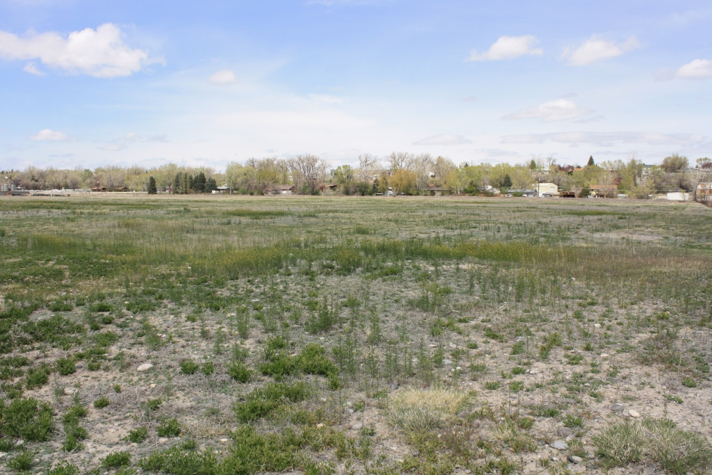The new Riverton elementary school is slated for this parcel of land on West Monroe. The school is now in the design phase. (File photo)