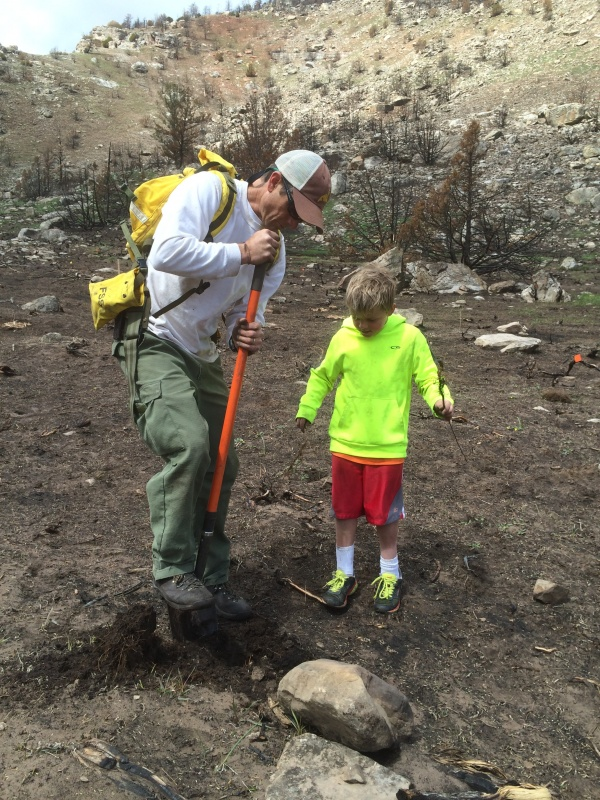 Tim Kramer and his son Luka planting a seedling in the burned area. (Popo Agie Conservation District photo)