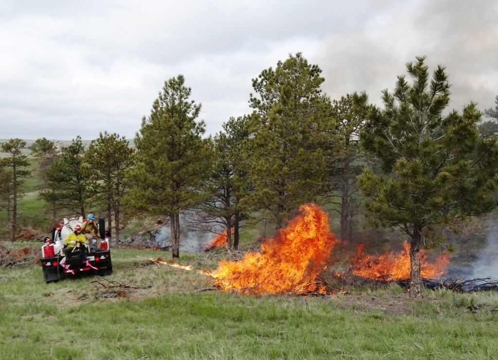 The Tera Torch was used at the WYOFIRE training this past weekend in the Black Hills. (Karl Brauneis)