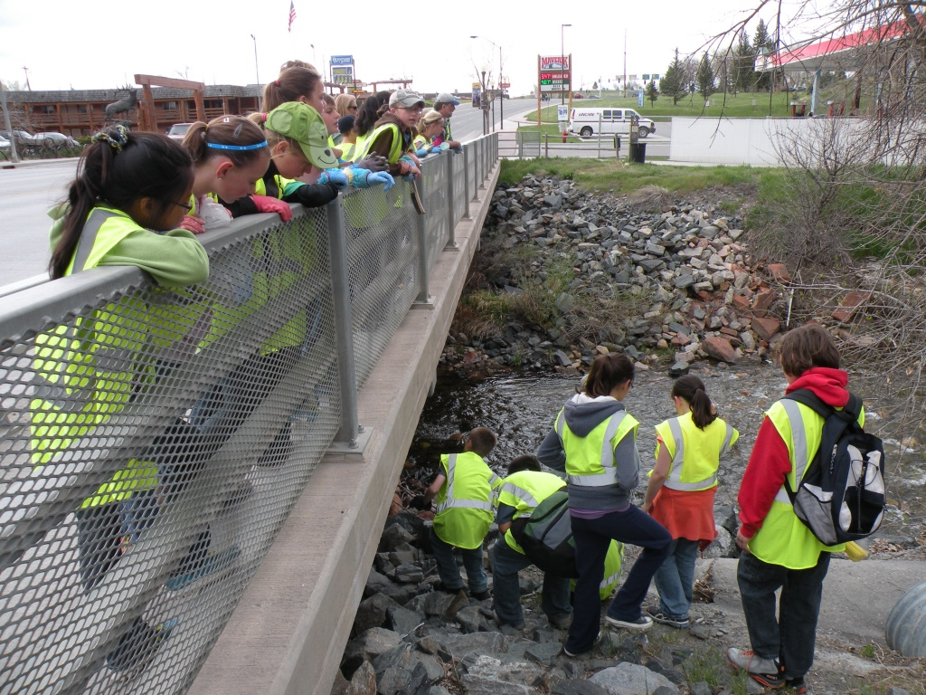 The students explore where the storm drains empty into the Middle Fork of the Popo Agie River.