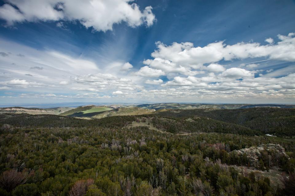Looking out from Blue Ridge above Lander. Mike Gauldoni photo.