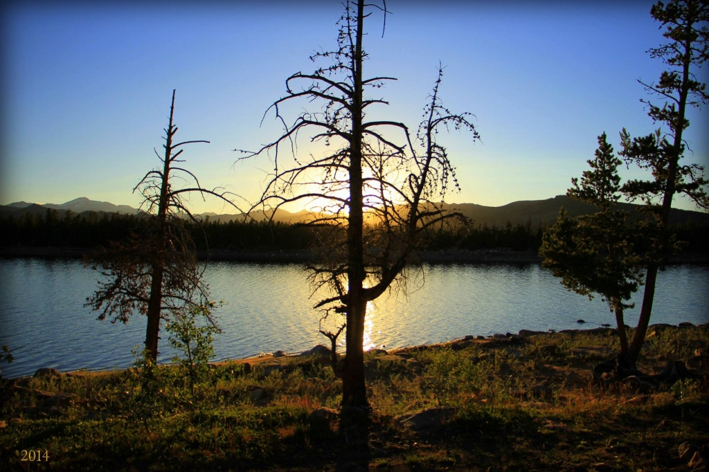 The skeleton of a tree set against the setting sun at Frye Lake along the Loop Road above Lander Monday night. (Steve Simpson photo)