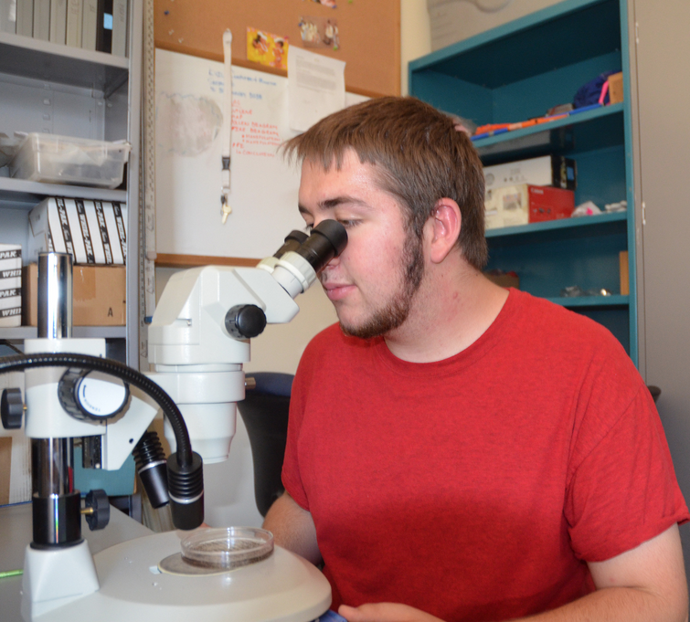 Bradley Branson of Riverton conducts research in the UW College of Arts and Science Building. (UW Photo)