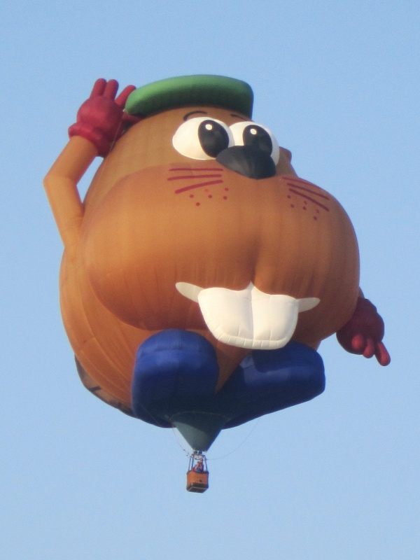 Media Day at Riverton Rendezvous Balloon Rally features a special envelope this year, Bud E. Beaver, and an old favorite, Humpty Dumpty. (Ernie Over photo)