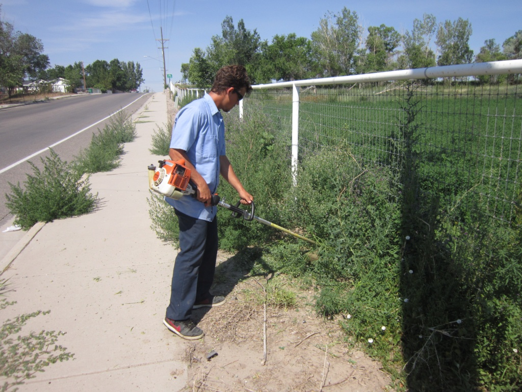 Jerrod Blury worked on East Park today ridding the sidewalk and fence line of unwanted growth. (Ernie Over photo)