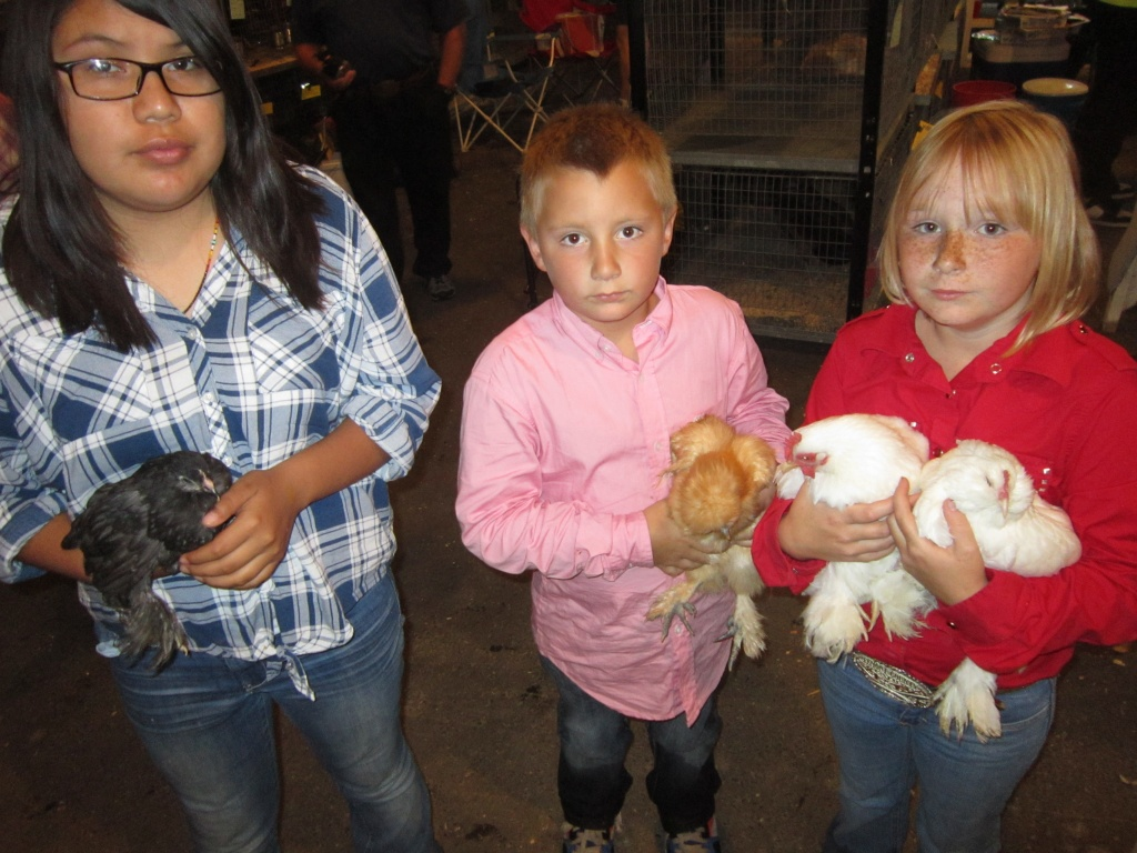 Asholyn Wagon, Jackson Kiser and Kailyn Kiser with their chickens prior to judging. (Ernie Over photo)