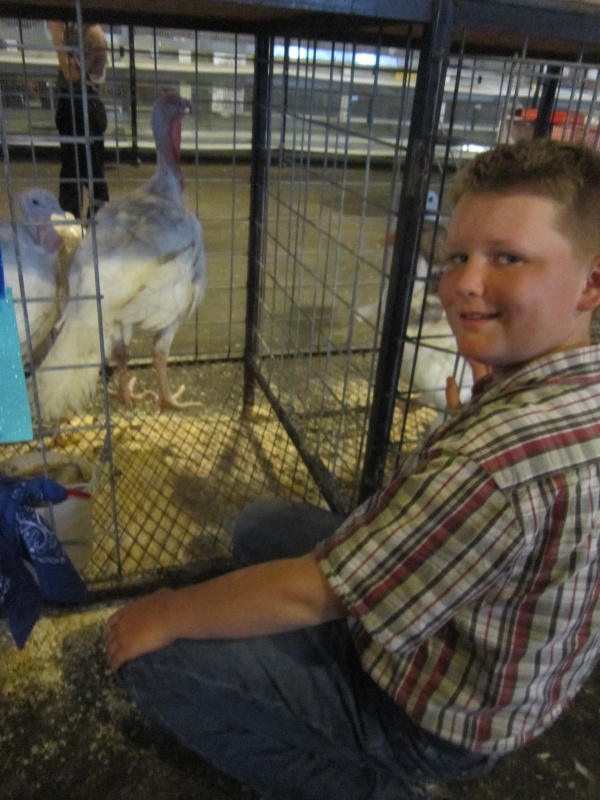 William Shade of Lander showed his White Giant turkeys at the Youth Poultry event. (Ernie Over photo)