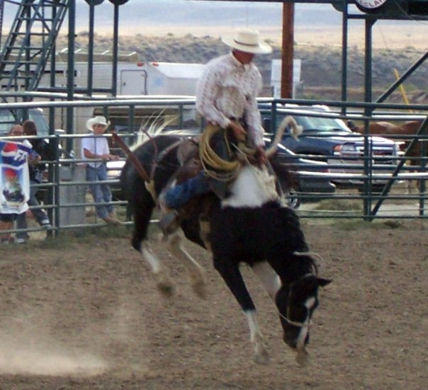 Jed Ranch broncs