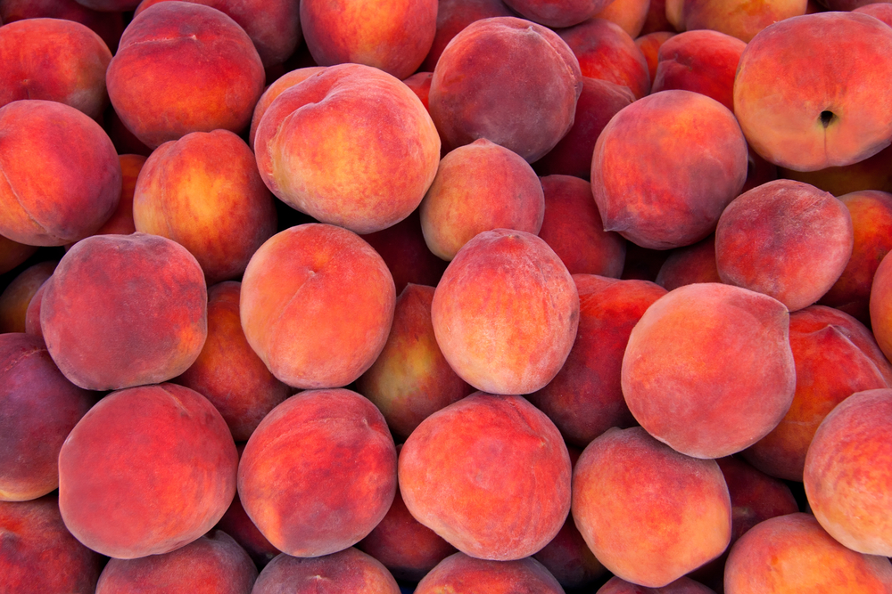 Fresh peaches. Photo by Leyla Ismet/shutterstock.