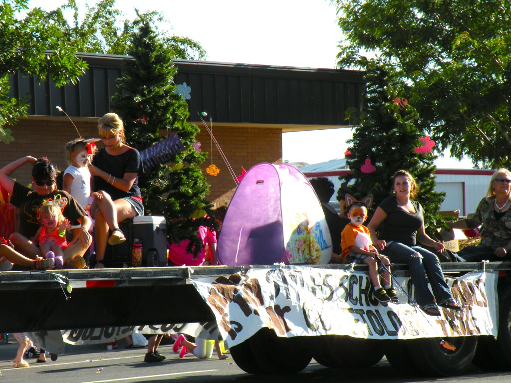 Style School of Cosmetology won the Commercial category with this float.