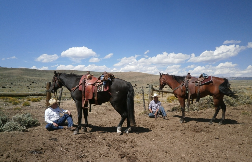 Karl and Stormy, Sally and LeRoy take a break after moving cattle this week. Photo supplied by Karl Brauneis.