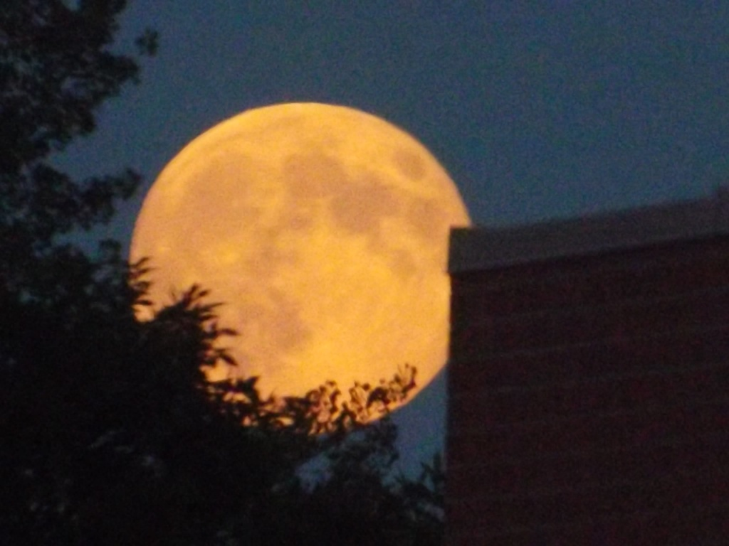 "The ""super moon"" over Riverton Sunday night. Kerrie Metcalf photo."