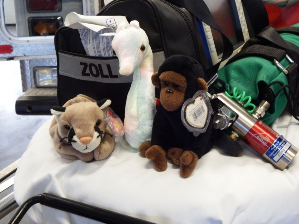 "Fremont  County EMS is looking for donations of stuffed animals and toys for children in their first annual ""Teddies for Christmas"" drive. Stuffed animals will be carried onboard ambulances for kids to help calm them."