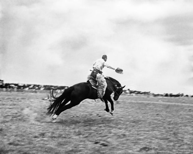 Clayton Danks riding Steamboat, the horse believed to be the model for Wyoming's iconic Bucking horse and rider image. (collection of Jean Mathisen Haugen)