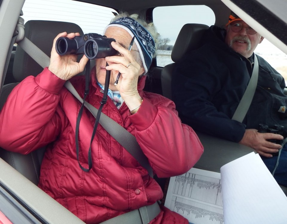 Donnabelle Leonhardt and Ernie Schierwagen looked for and counted bird species near Riverton during the annual bird count.