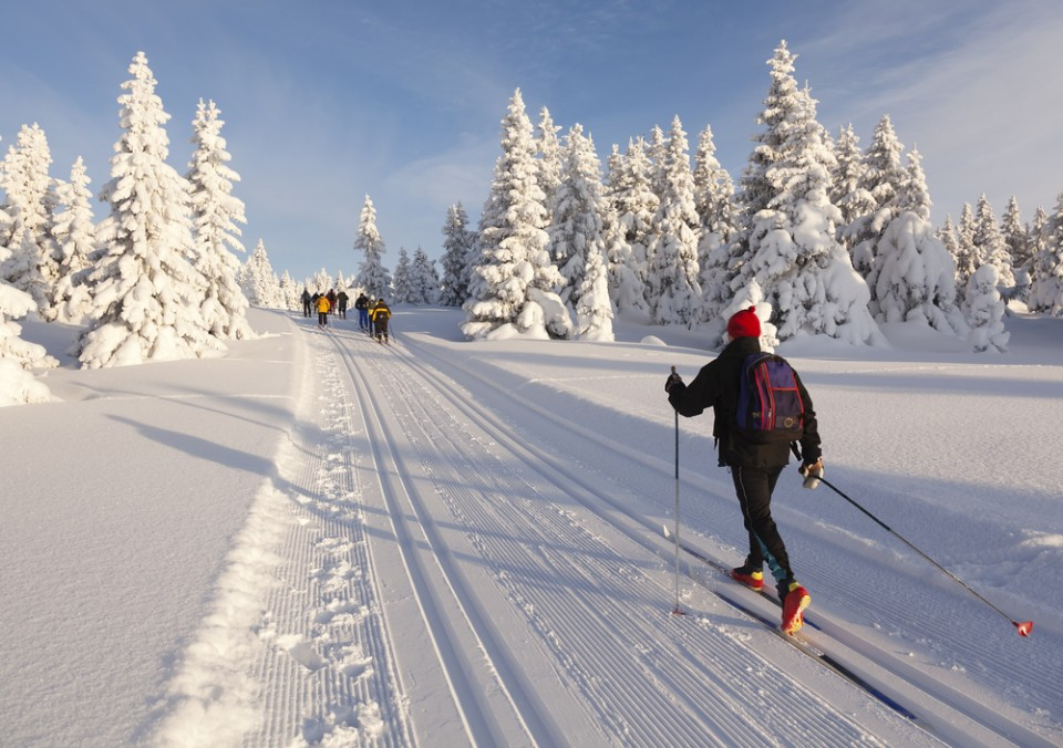 Cross country skiing photo by Rob Kints/shutterstock.