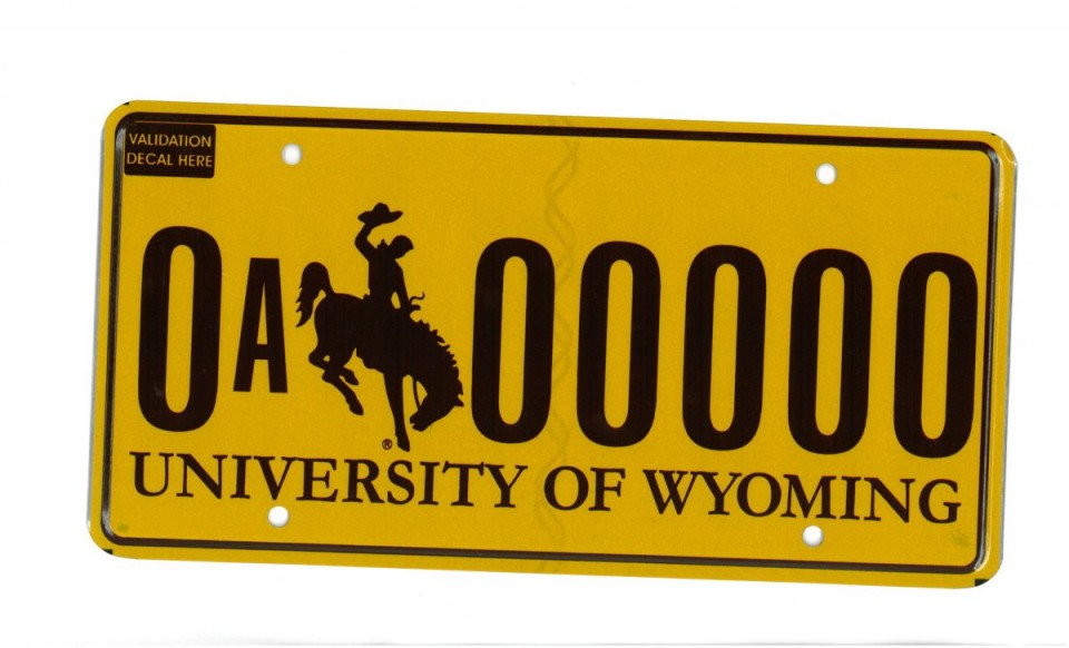 The new UW license plates, featuring a gold background and brown lettering, will be available starting in 2017. (UW)