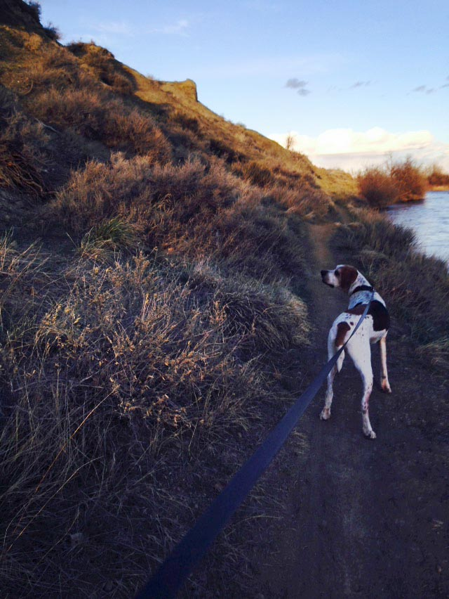 Dudley on the banks of the North Platte River. (Photo provided by Elliott Ramage)